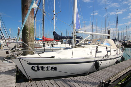 Bavaria 35  (SOLD)